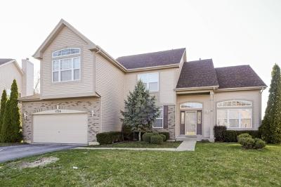 Aurora Single Family Home For Sale: 1756 Flagstone Lane