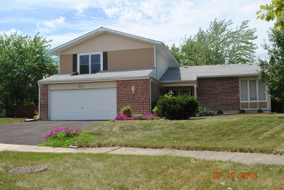 Bolingbrook Single Family Home New: 381 Stafford Court