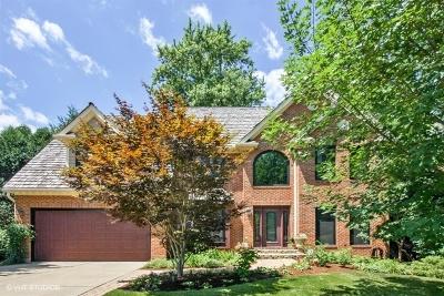 Glen Ellyn Single Family Home New: 924 Newton Avenue
