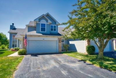 Oswego Condo/Townhouse New: 410 Prairieview Drive