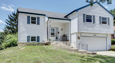 Bartlett IL Single Family Home New: $248,888