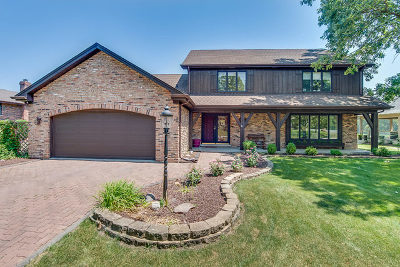 Du Page County, Kane County, Kendall County, Will County Single Family Home New: 8413 South Park Avenue