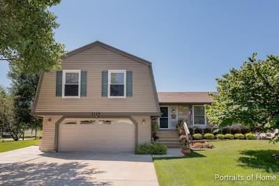 Schaumburg Single Family Home New: 2115 Tiffany Drive