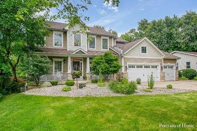 Wheaton Single Family Home New: 1n003 Richard Avenue