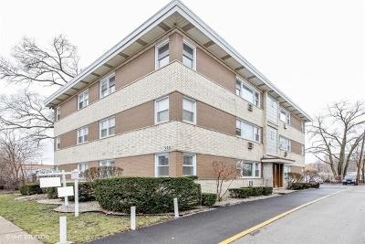 La Grange Condo/Townhouse New: 308 Beach Avenue #3A