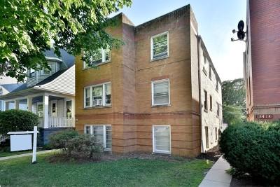 Berwyn Multi Family Home New: 3416 South Grove Avenue