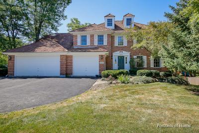 Naperville Single Family Home New: 380 River Ridge Court