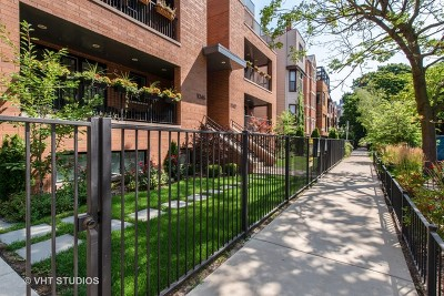 Chicago Condo/Townhouse New: 1046 West Altgeld Street #1N