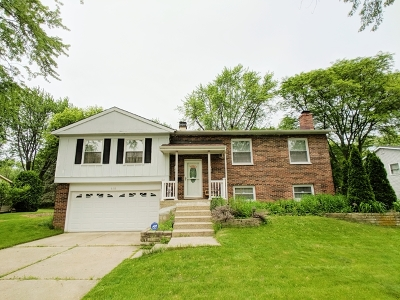 Libertyville Single Family Home New: 618 East Golf Road