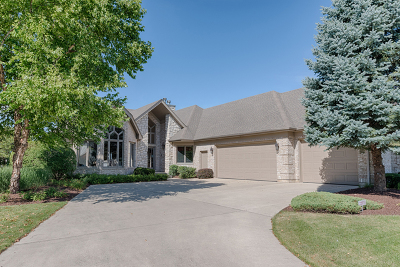 Plainfield Single Family Home For Sale: 13340 Wood Duck Drive