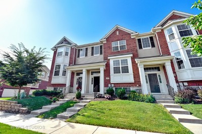 Orland Park Condo/Townhouse New: 10567 154th Place