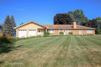 Mount Prospect Single Family Home For Sale: 419 South Ojibwa Trail
