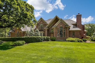 Du Page County Single Family Home New: 31w311 Prairie Lane