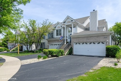 Naperville Condo/Townhouse New: 1508 Longbranch Court