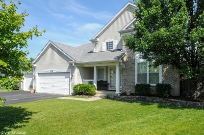 Naperville Single Family Home New: 804 Livingston Court