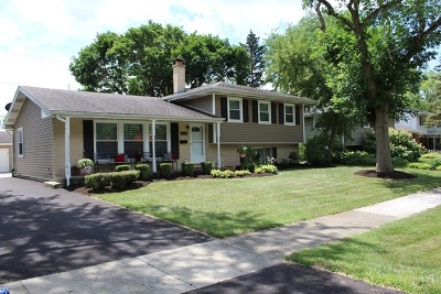 Naperville Single Family Home New: 440 Tupelo Avenue