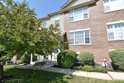Elburn Condo/Townhouse For Sale: 675 East Willow Street