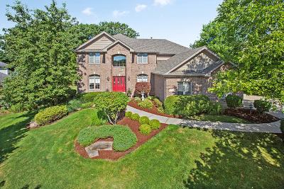 Homer Glen Single Family Home New: 16220 Ridgewood Drive
