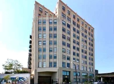 Chicago IL Condo/Townhouse New: $265,000
