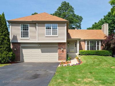 Bartlett IL Single Family Home New: $314,900