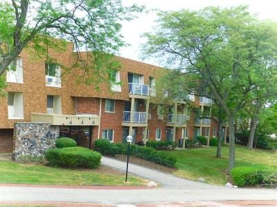 Buffalo Grove Condo/Townhouse New: 1 Villa Verde Drive #218
