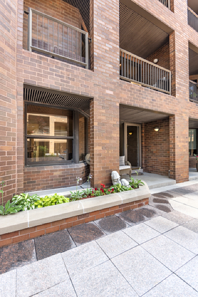 Chicago Condo/Townhouse New: 1000 North State Street #5