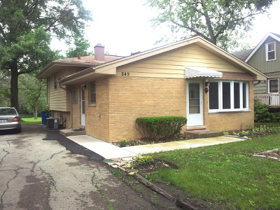 Du Page County Single Family Home New: 849 East Red Oak Street