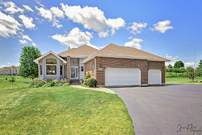 McHenry Single Family Home New: 2005 Julia Way