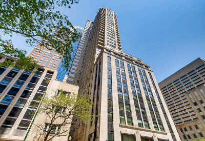 Chicago Condo/Townhouse New: 118 East Erie Street #16D