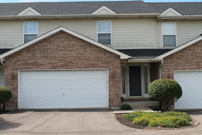 Elburn Condo/Townhouse New: 813 Shepherd Lane