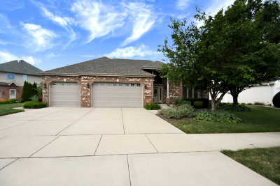 Orland Park Single Family Home New: 14216 South 85th Avenue