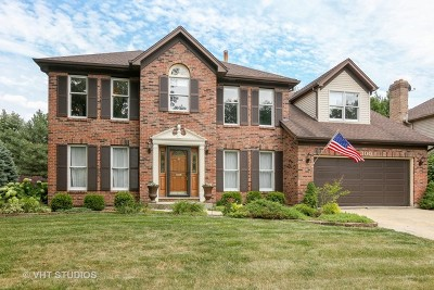 Naperville Single Family Home New: 300 Prairie Knoll Drive