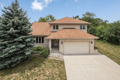 Orland Park Single Family Home New: 14200 Creek Crossing Drive