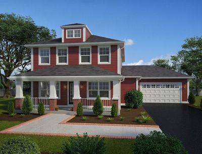 Channahon Single Family Home New: 25246 West Town Center Circle