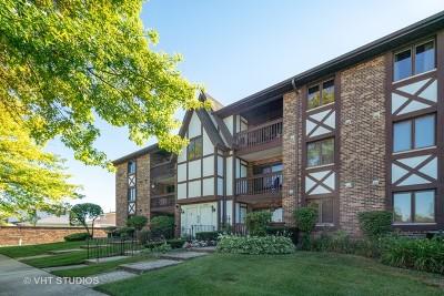 Oak Lawn Condo/Townhouse New: 10221 Major Avenue #304