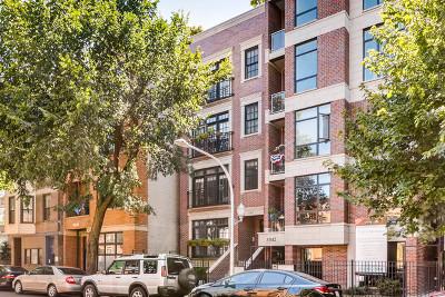 Chicago Condo/Townhouse New: 3340 North Sheffield Avenue #4