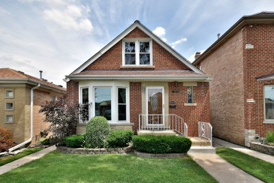Chicago IL Single Family Home New: $389,000