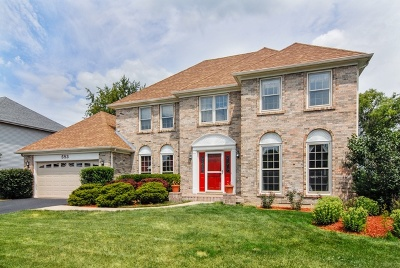 Naperville Single Family Home New: 583 Apple River Drive