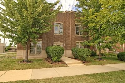 Chicago IL Condo/Townhouse New: $164,900