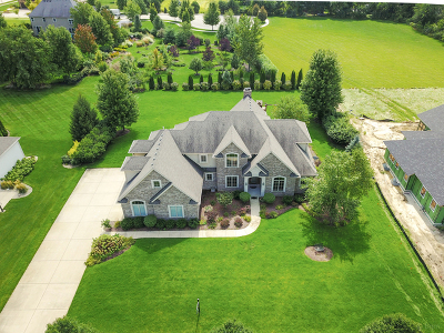 Plainfield Single Family Home For Sale: 25909 West Prairie Hill Lane
