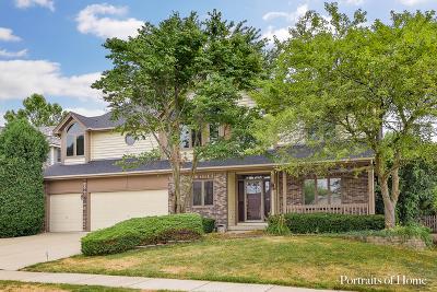 Aurora Single Family Home New: 633 Clarendon Lane