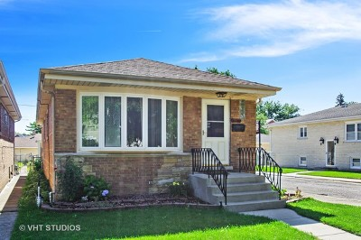 Chicago Single Family Home New: 3701 North Oketo Avenue