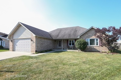 Romeoville Single Family Home New: 342 Quincy Court