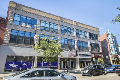 Chicago Condo/Townhouse New: 3201 North Seminary Avenue #209