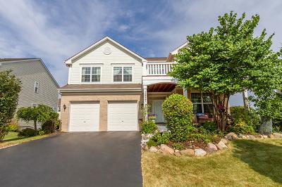 Elgin IL Single Family Home New: $339,000