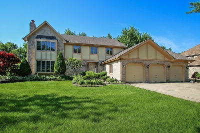 Schaumburg Single Family Home For Sale: 1525 Burberry Lane
