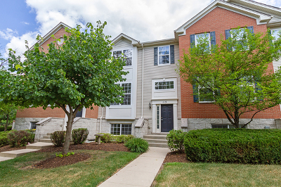 Kane County Condo/Townhouse New: 115 Willey Street #115