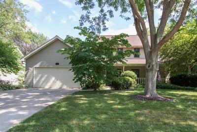 Kane County Single Family Home New: 817 Bernadette Lane