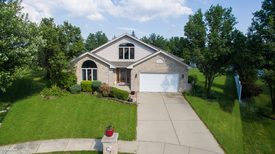 Lockport Single Family Home New: 16411 South Cypress Circle
