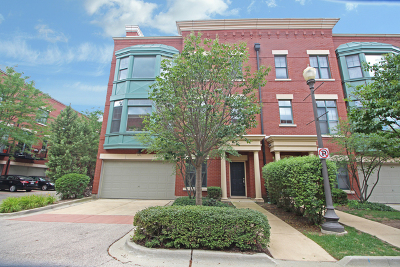 Kane County Condo/Townhouse New: 149 River Walk Court